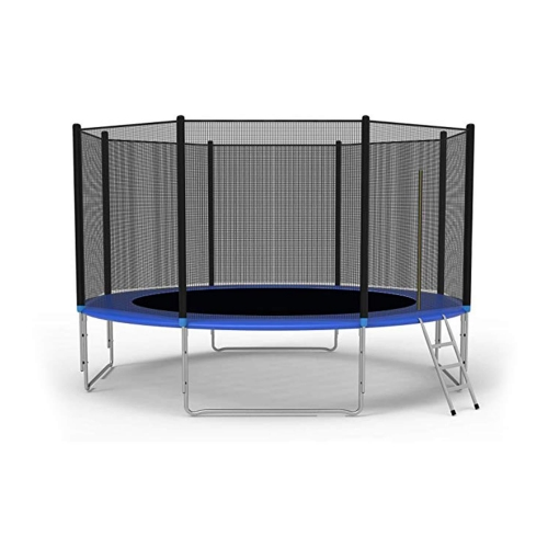 10Ft Trampoline with Safety Enclosure Net, Spring Pad, Ladder, Combo Bounce Jump Trampoline, Outdoor Trampoline for Kids, Adults